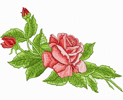 Rose Flower Embroidery Designs Images