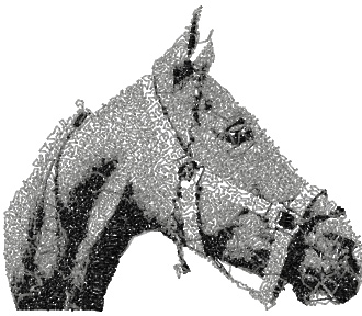 horse photo stitch free embroidery design