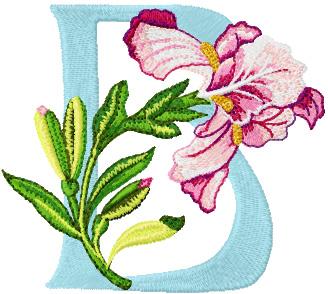 Iris letter B free embroidery  B Alphabet Design