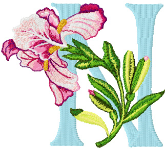 N Alphabet Design Letter N With Design Iris letter n free machine embroidery design